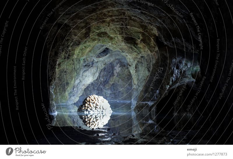 Nature Water Dark Environment Exceptional Stone Elements Tourist Attraction Cave Natural phenomenon Rock formation