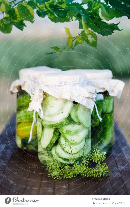 Pickled cucumbers made with home garden vegetables and herbs Vegetable Herbs and spices Vegetarian diet Garden Leaf Fresh Natural Green Bench Canned Dill food
