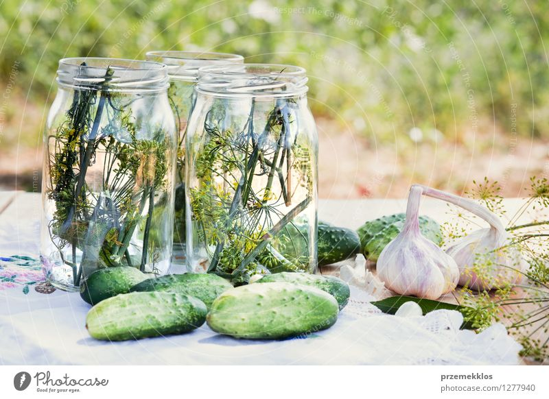 Preparing ingredients for pickling cucumbers Vegetable Herbs and spices Vegetarian diet Garden Fresh Natural Green Canned Dill food Garlic glass healthy