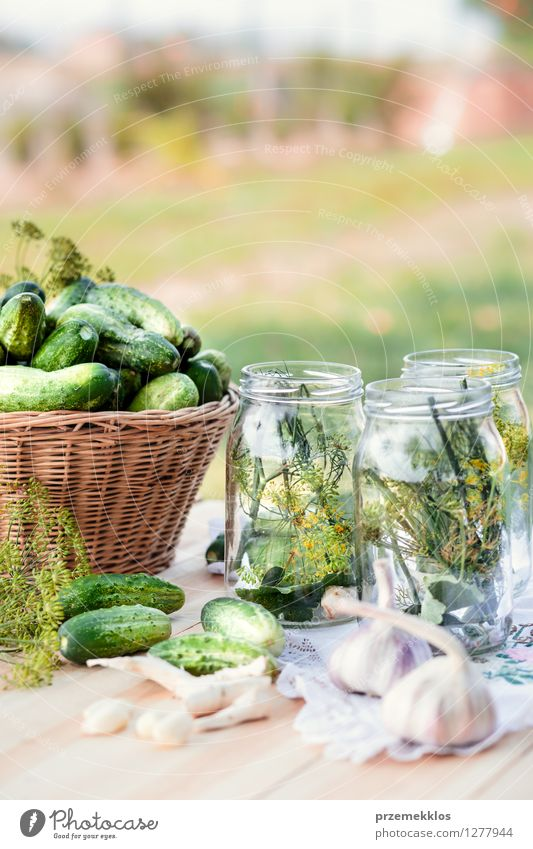 Preparing ingredients for pickling cucumbers Food Vegetable Herbs and spices Vegetarian diet Garden Fresh Natural Green Basket Canned Dill Garlic glass healthy