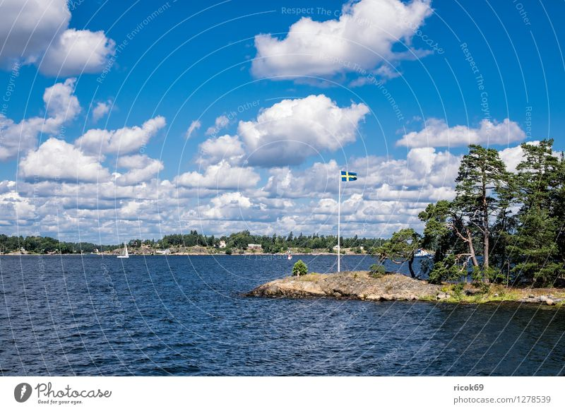 Archipelago on the Swedish coast Relaxation Vacation & Travel Tourism Island Nature Landscape Clouds Tree Forest Coast Baltic Sea Flag Blue Green Idyll Skerry