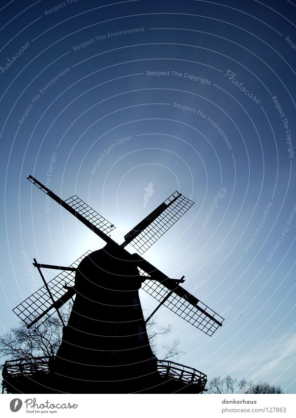 Hidden! Mill Windmill Manmade structures Sun White Black Silhouette Historic Hide Blue Sky Beautiful weather Contrast Shadow