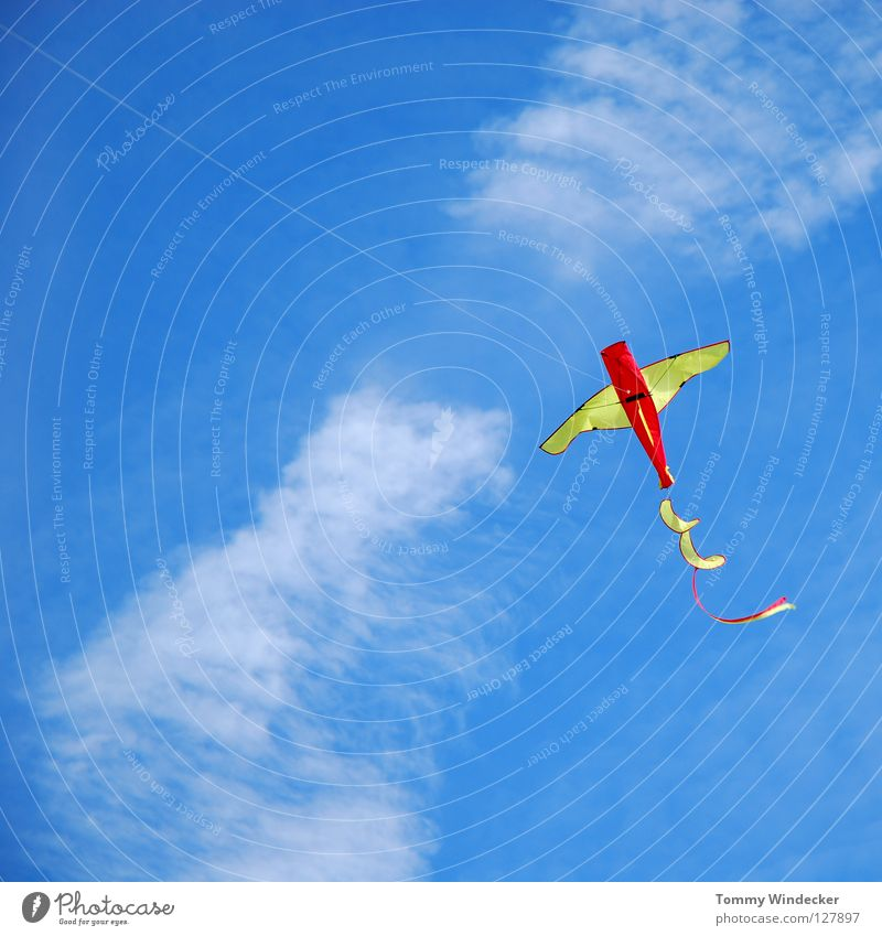 Kite Aerial Photography III Dragon Airplane Gale Multicoloured Leisure and hobbies Toys Handicraft Home-made Autumn Hang gliding Clouds Ascending Aircraft China