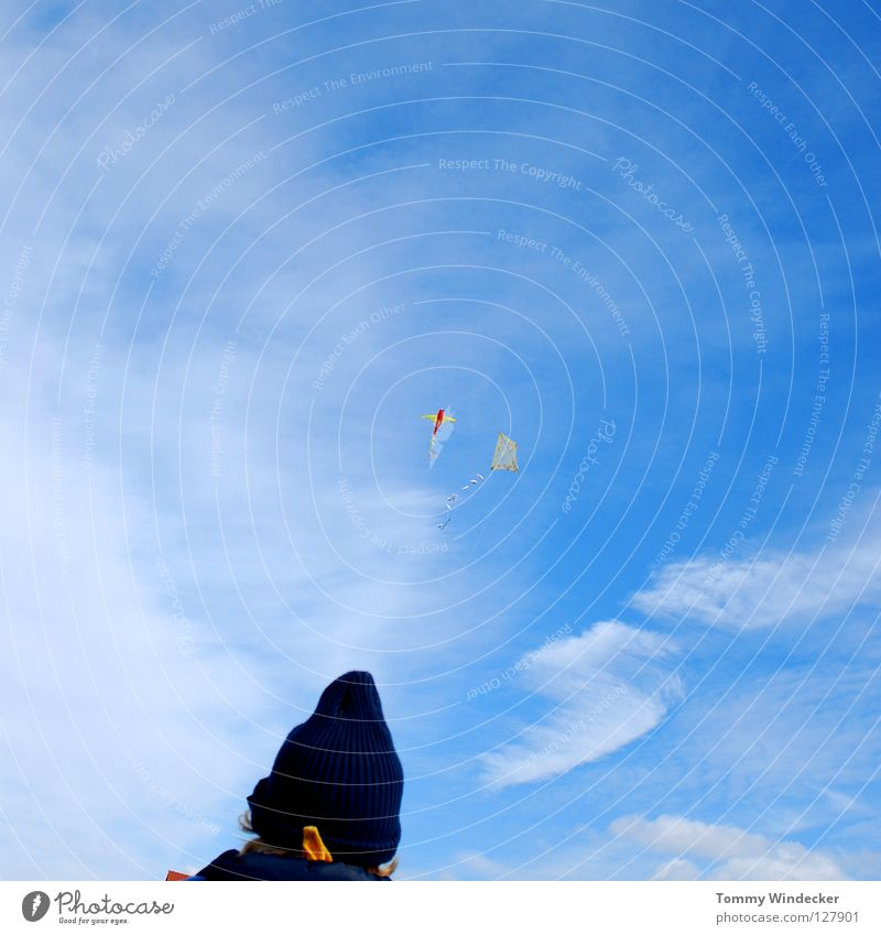 Sky Blue Beach Joy Clouds Autumn Above Freedom Air Wind Leisure and hobbies Flying Free Airplane Aviation Wing