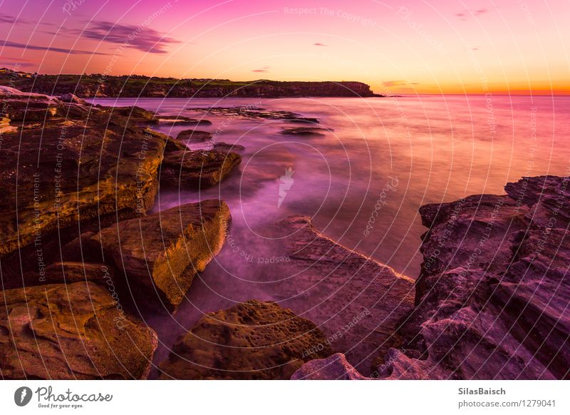 Sunrise in Sydney Nature Vacation & Travel Summer Sun Ocean Loneliness Landscape Far-off places Beach Emotions Coast Freedom Lifestyle Moody Rock Horizon