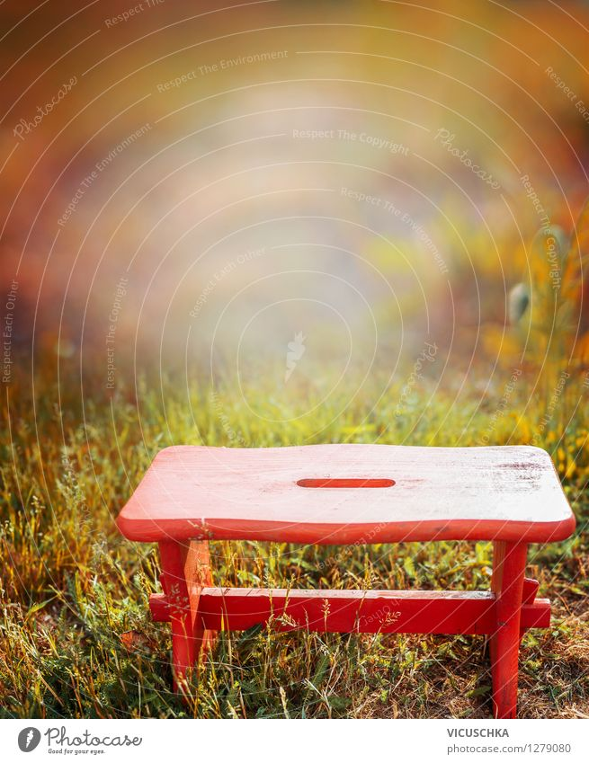 Red stool in autumn garden Style Design Relaxation Camping Garden Nature Plant Sunlight Summer Autumn Beautiful weather Flower Park Retro Background picture