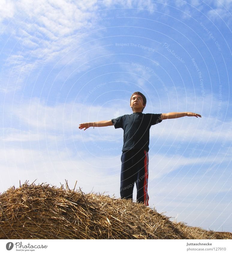 Child Sky Blue Joy Calm Above Boy (child) Freedom Think Contentment Flying Arm Tall Free Vantage point Peace