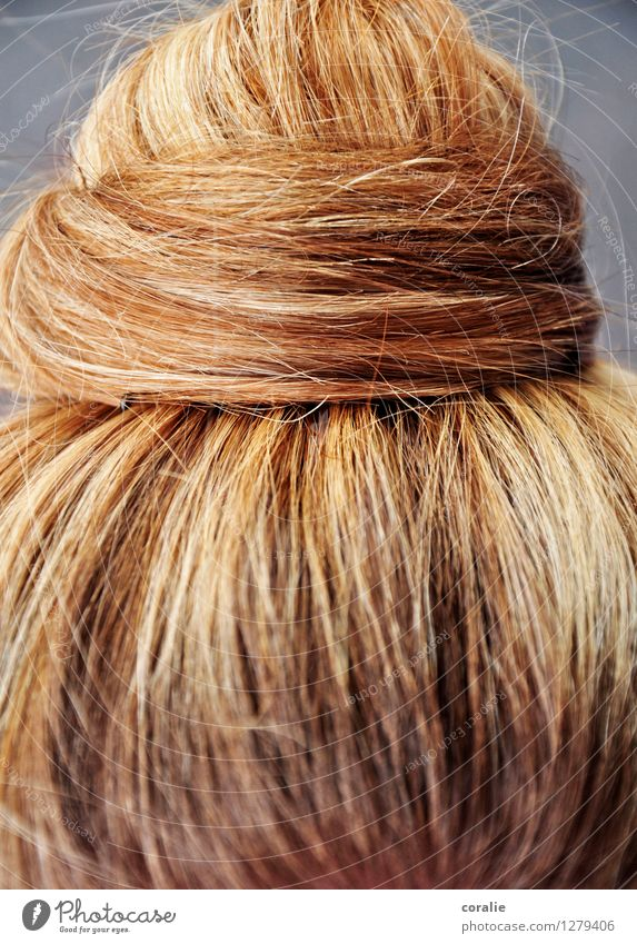knotted Young woman Youth (Young adults) Hair and hairstyles Blonde Beautiful Knot Strand of hair Rotated Coil Fine Arrangement Feminine Tidy up Wound up