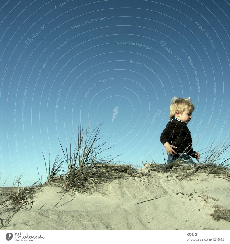 Child Sky Joy Beach Sand Small Horizon Wind Going Walking Sweet Beach dune Toddler Blue sky Dwarf Goblin