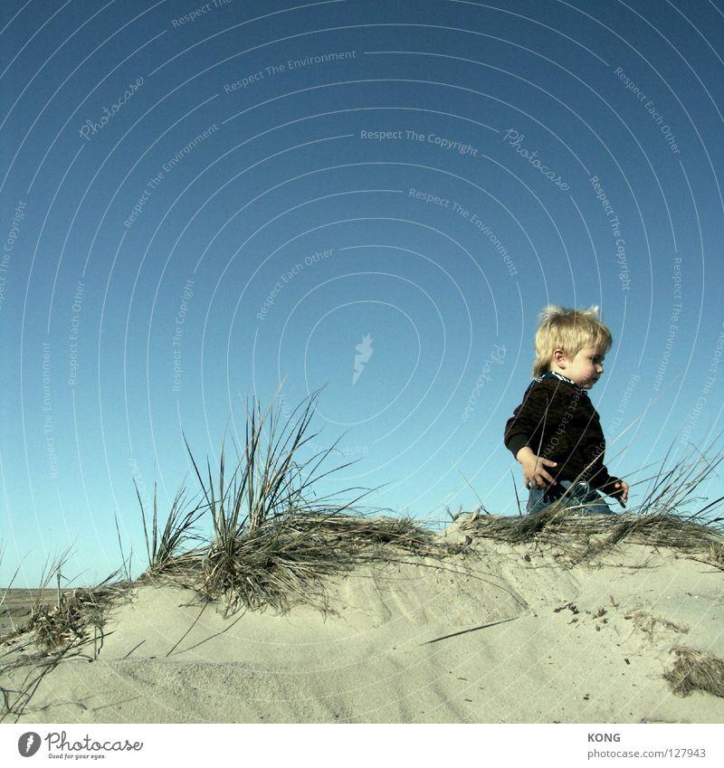 leaving Small Dwarf Child Toddler Horizon Going Goblin Sweet Beach Joy Beach dune Sand Walking run out cute Wind Blue sky Sky