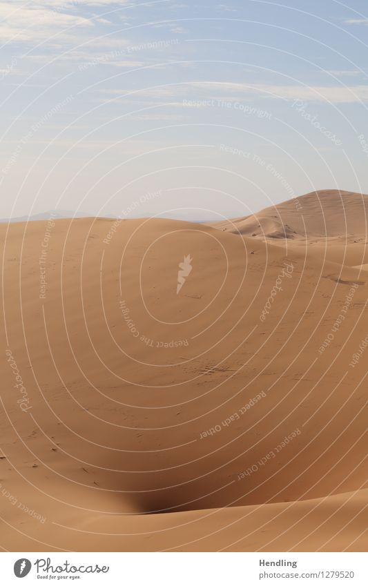Sahara hole Warmth Adventure Dry Hot Hollow Desert Water Sand Dune Morocco Africa Colour photo Multicoloured Exterior shot Deserted Day Light Shadow