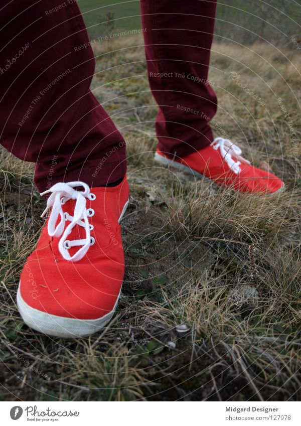 red Winter Hiking Human being Young woman Youth (Young adults) Life Legs Feet 1 18 - 30 years Adults Grass Pants Footwear Movement Going Walking Red Colour