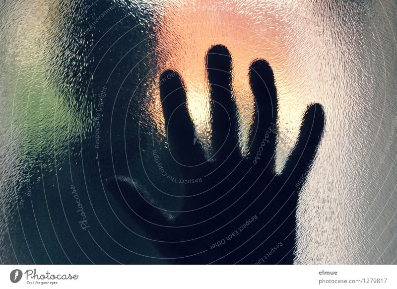 Human being Hand Loneliness Dark Emotions Fear Dangerous Communicate Threat Might Fear of death Contact Stop Barrier Pain Connection