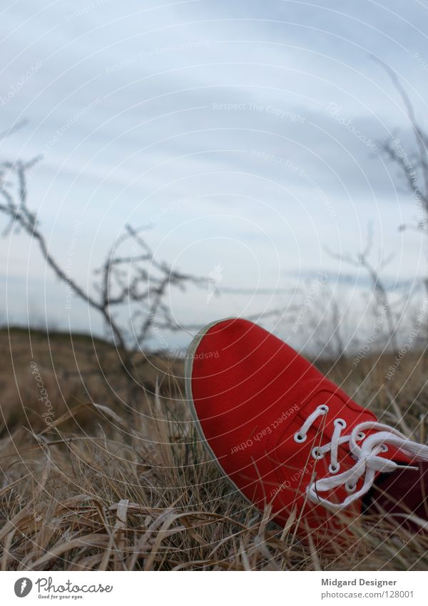 Red in grass 2 Winter Sky Grass Field Footwear Lie Blue White Doomed Deserted Sneakers Break Exterior shot Shoelace Copy Space top Copy Space middle Low-key