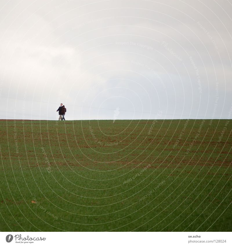 Sky Green Spring Gray Couple Line Field Hiking Horizon Earth In pairs To go for a walk Border
