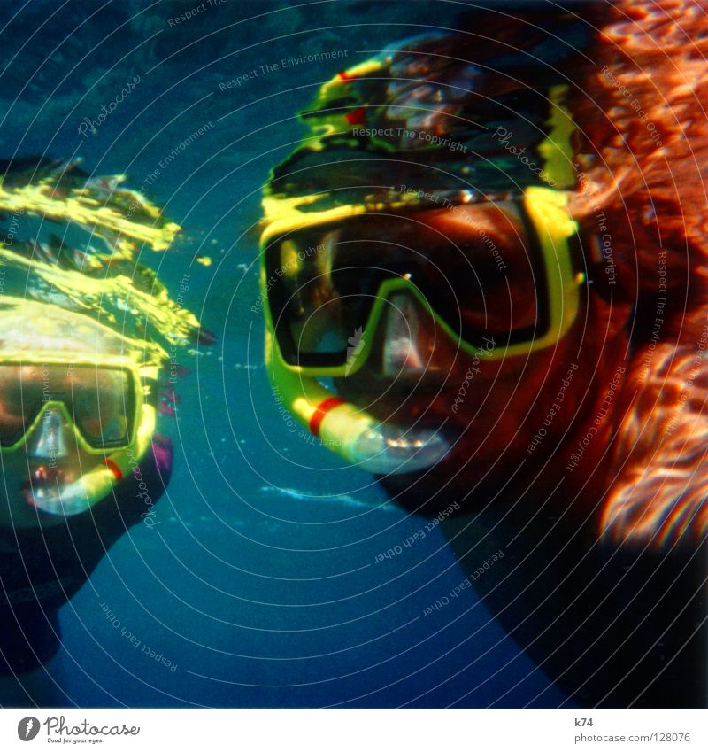 LIFE AQUATIC Oceanograph Diver Trip Diving goggles Diving equipment Snorkeling Reflection Light Yellow Man Woman Fluid Submarine Science & Research Water