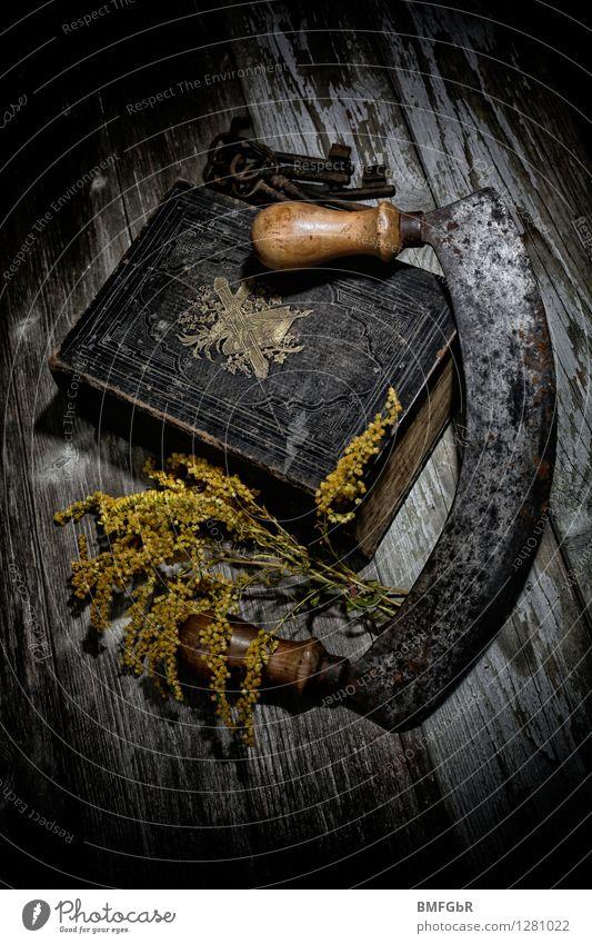 horror stories Hallowe'en Bible Key Scythe Old Threat Dark Creepy Retro Trashy Black Fear Horror Fear of death Fear of the future Dangerous Distress Perturbed