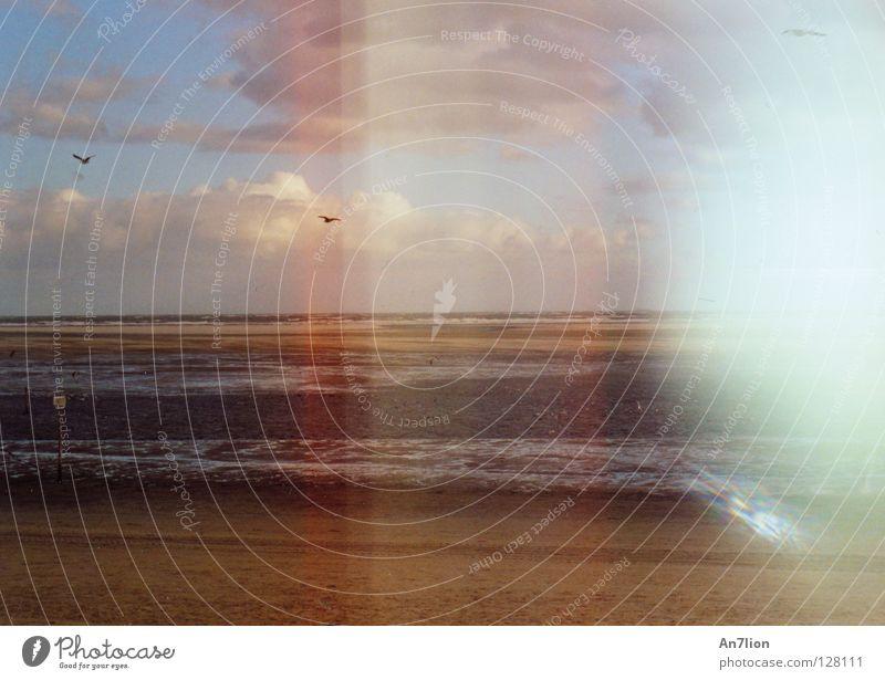 Ocean Stripe Exposure Error Low tide Photographic technology Ameland