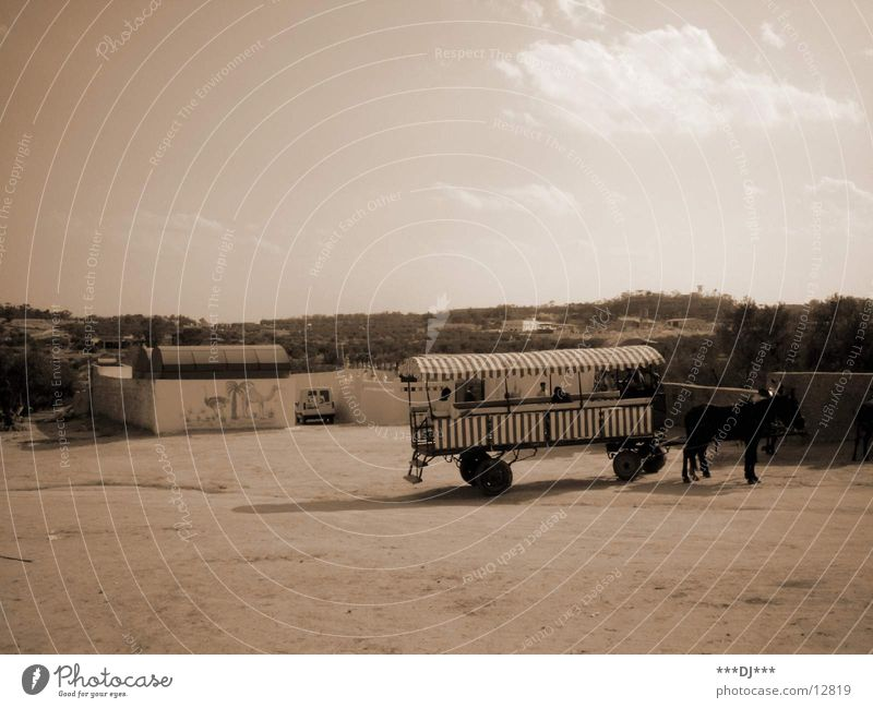 horse and cart Carriage Horse Farm move