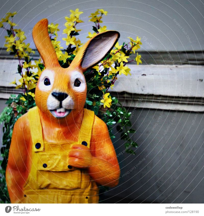 pesky wabbit Working man Nightmare Monday Easter Folklore music Hare & Rabbit & Bunny Creepy Overalls Goldenchain tree Fear Mammal coney herbivore elmer fudd
