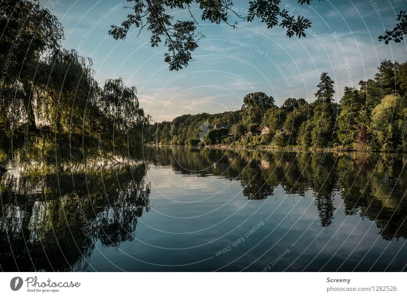 Lake Harik Vacation & Travel Tourism Trip Nature Landscape Plant Water Sky Clouds Summer Beautiful weather Tree Lakeside Wet Blue Green Calm Idyll Colour photo
