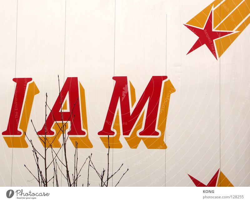 White Tree Red Yellow Wall (building) Art Characters Star (Symbol) Sign Letters (alphabet) Painting (action, work) Information Twig Fame Arts and crafts