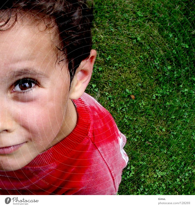 Child Boy (child) Meadow Above Think Masculine Communicate Concentrate Watchfulness Skeptical Alert