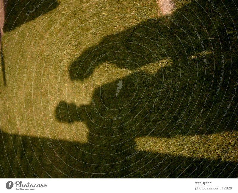 Grass shadow -1- Man Light Green Dark Silhouette Shadow Sun Bright