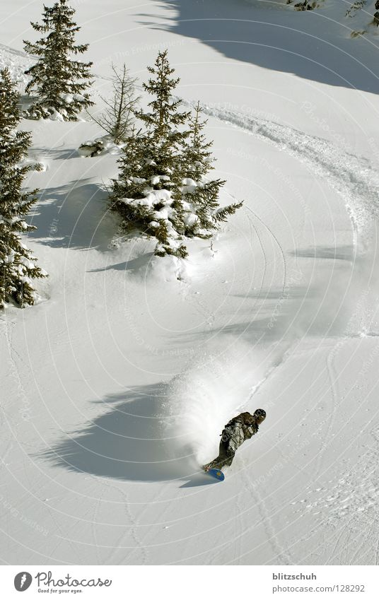 Winter Mountain Emotions Snow Freedom Switzerland Curve Downward Swing Snowboard Winter sports Coniferous trees Freestyle Tilt Snow layer Snowboarding