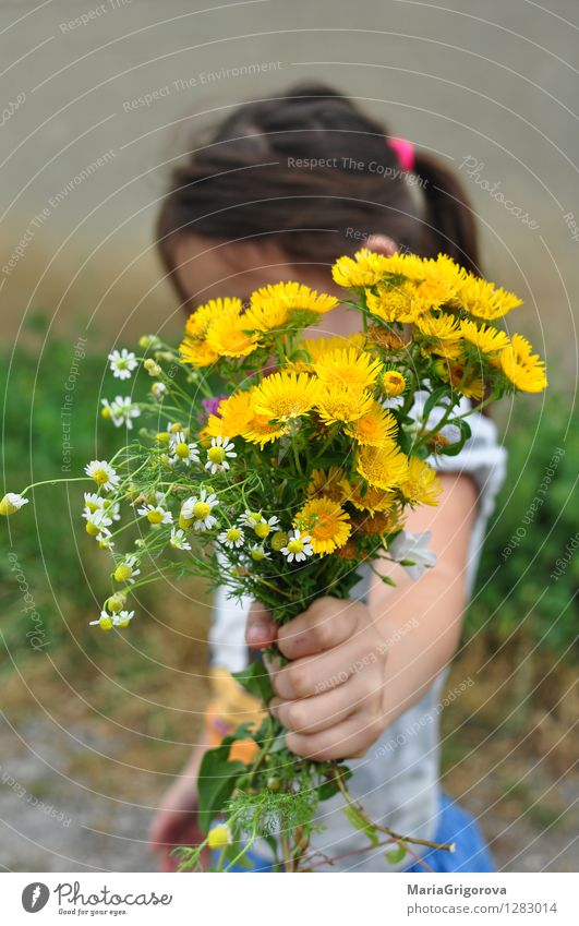 cute little girl holding a bouquet of wildflowers Human being Child Nature Vacation & Travel Plant Beautiful Summer Flower Hand Leaf Joy Mountain Love Blossom Emotions Healthy
