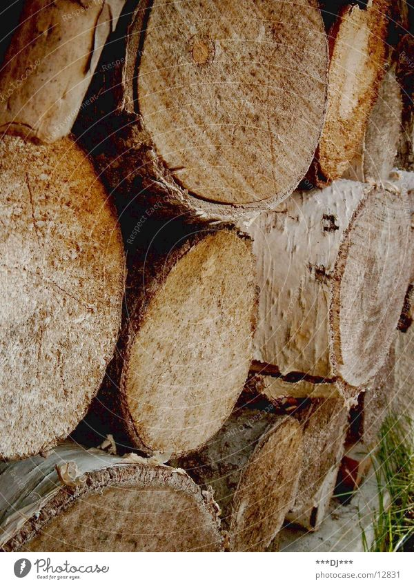 stack of wood Wood Saw Cut down Consecutively Process pile