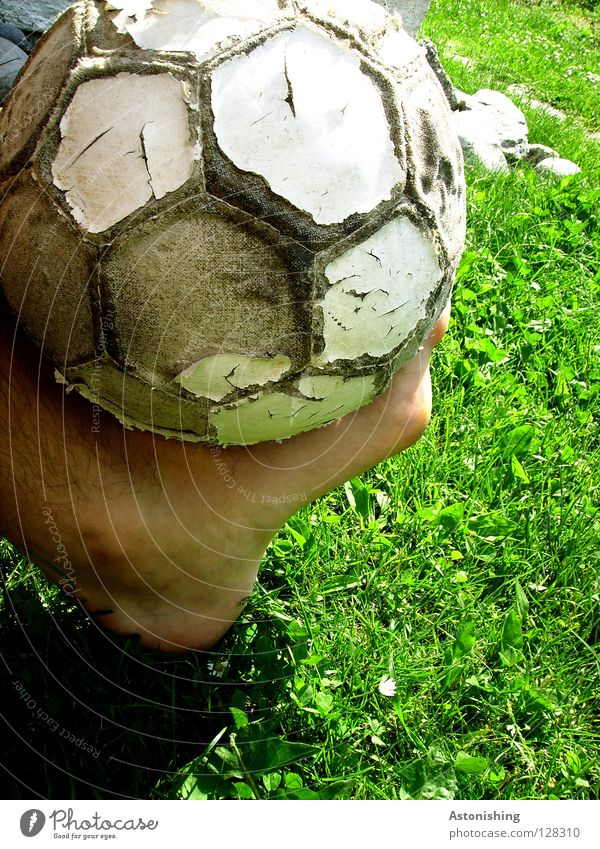 Lerder skin Leather Toes Grass Playing Sports Feet Legs Skin Ball Shadow Old Joy Foot ball Shabby Ankle 1 Balance Juggle Close-up Exterior shot Colour photo