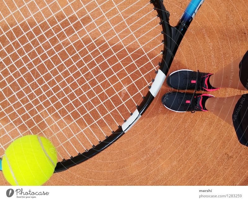 tennis training Leisure and hobbies Playing Sports Fitness Sports Training Ball sports Sportsperson Success Sporting Complex Human being Feminine Legs 1