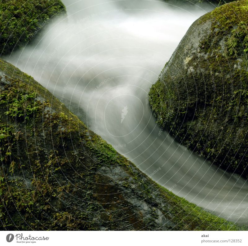 Water Beautiful Cold Mountain Landscape River Soft Curve Brook Downward Waterfall Bend Warped White crest Black Forest