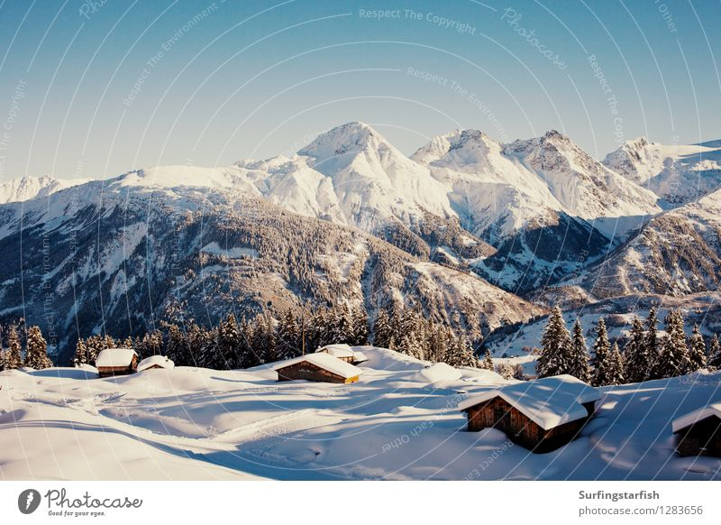 Snow-covered mountains Vacation & Travel Tourism Trip Winter Winter vacation Mountain Nature Landscape Alps Peak Snowcapped peak Tall Leisure and hobbies Alpine