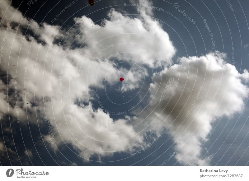 Sky Nature Blue White Red Clouds Joy Far-off places Environment Love Natural Small Flying Weather Air Birthday