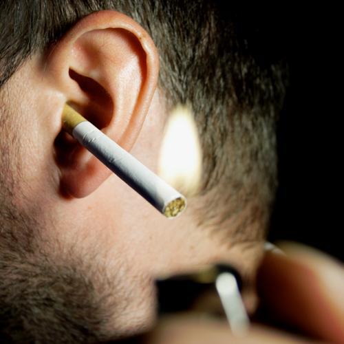 tux Outer ear Cigarette Smoke Burn Glow Ignite Lighter Nicotine Tar Dependence Intoxicant Tobacco Whimsical Humor Joy Ear Smoking Blaze chain smoker