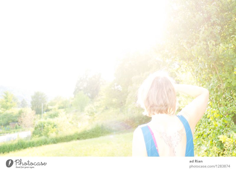 Human being Woman Nature Youth (Young adults) Summer Young woman Sun Landscape 18 - 30 years Forest Adults Warmth Meadow Happy Head Glittering