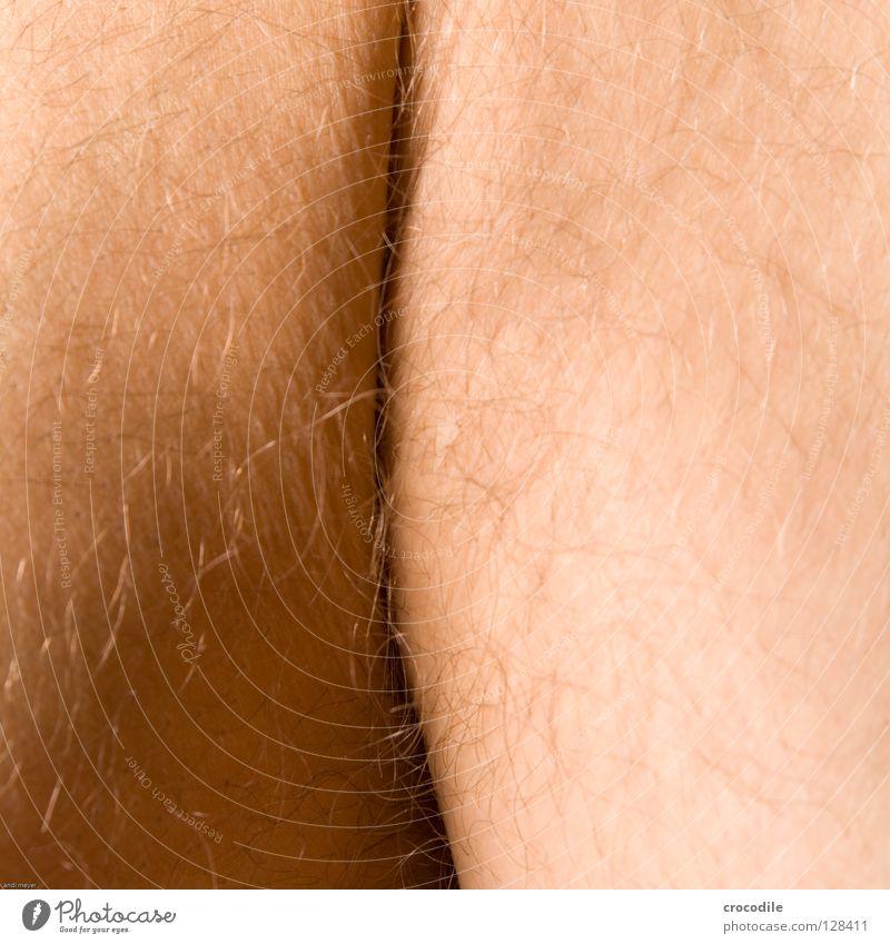 Human being Man Beautiful Body Skin Hind quarters Monkeys Wrinkles Column Macro (Extreme close-up) Gorilla