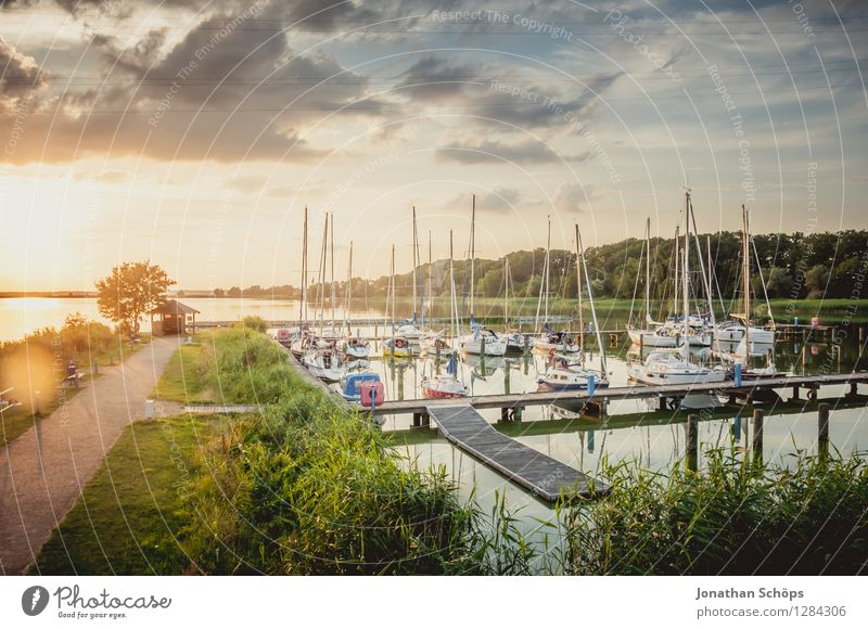 summer harbour Nature Landscape Air Water Summer Beautiful weather Happy Contentment Joie de vivre (Vitality) Anticipation Euphoria Power Warm-heartedness Idyll
