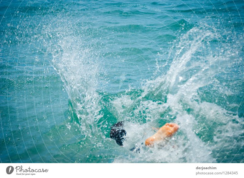 """""""Summer"""" at its best, Fun in the Pacific, Little water bomb in the ocean. Athletic Life Contentment Swimming & Bathing Aquatics Young man Youth (Young adults)"""