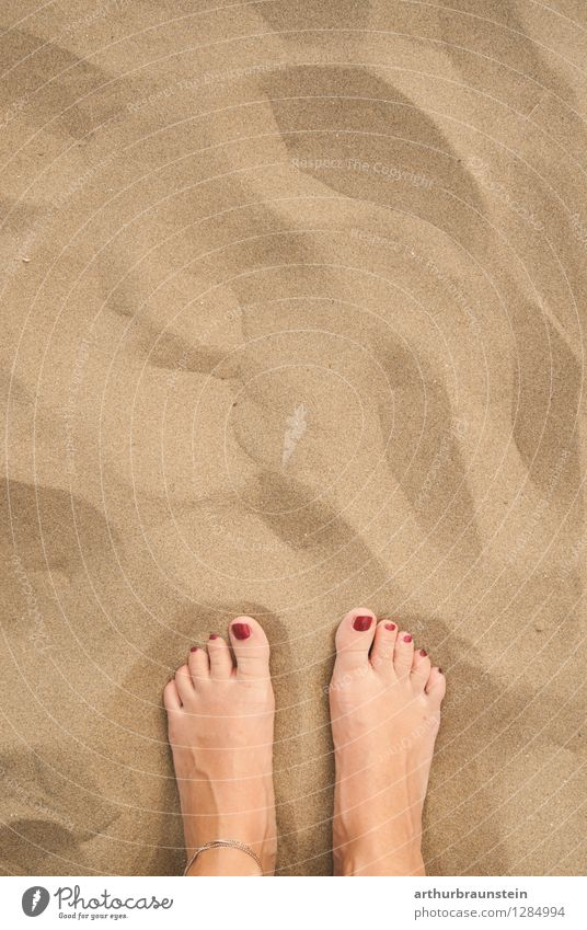 Feet in the sandy beach Pedicure Relaxation Vacation & Travel Tourism Summer Summer vacation Sun Beach Ocean Island Aquatics Pool attendant Human being Feminine