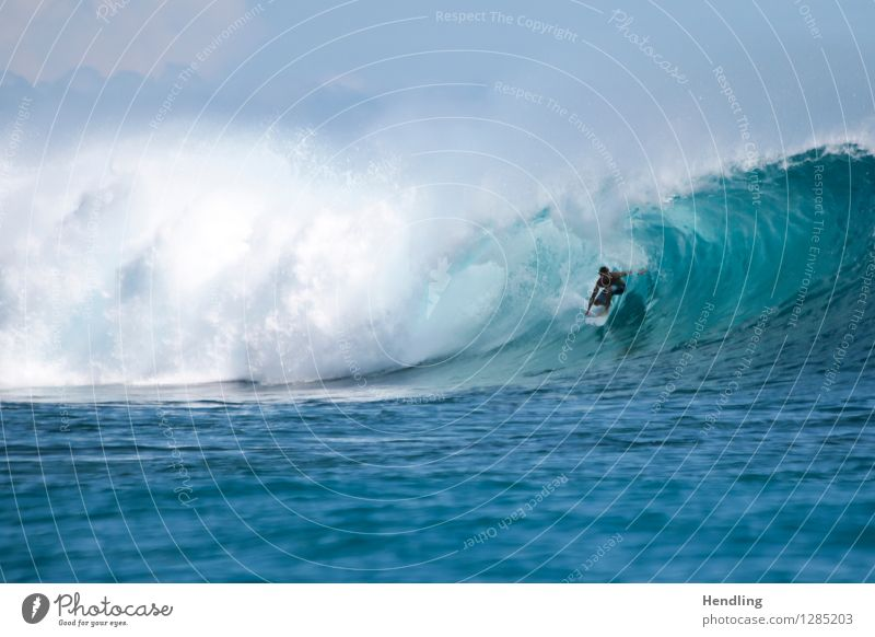 Surfing Indonesia Ocean Island Waves Human being Masculine 1 Power Life Dangerous Respect Adventure Water Surfer Surfboard Blue Mentawai Violet Reef Tube Pure