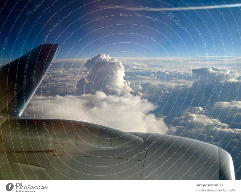 Sky Vacation & Travel Clouds Freedom Air Airplane Aviation Level Wing In transit Engines
