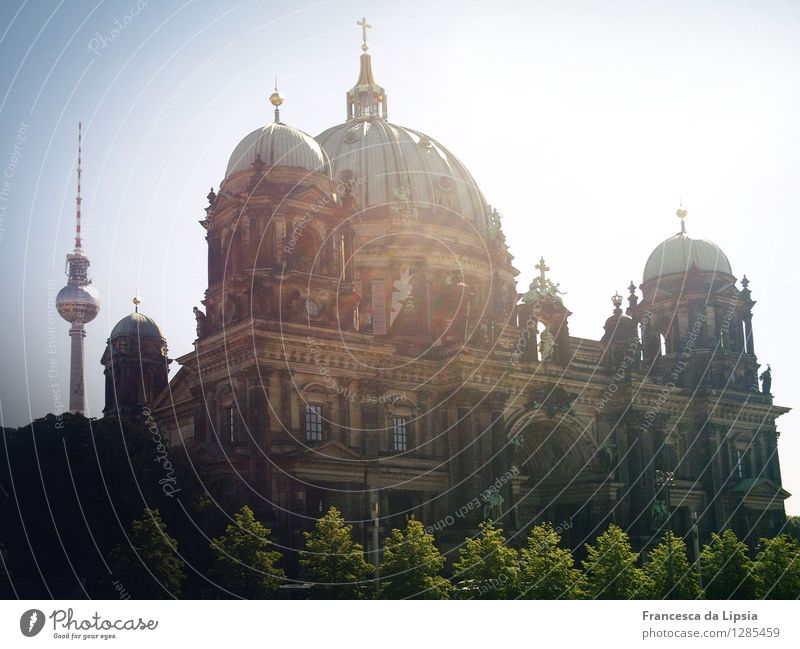 Summer in the city Sightseeing City trip Sun Museum Berlin Capital city Downtown Skyline Dome Park Tower Manmade structures Facade Tourist Attraction Landmark
