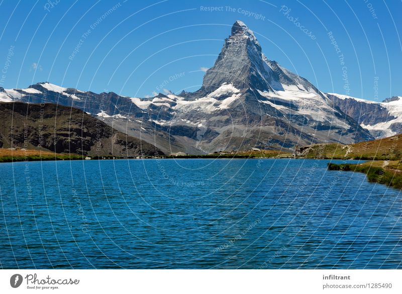 Swimming with a view of the Matterhorn Summer vacation Sun Mountain Hiking Nature Landscape Water Cloudless sky Beautiful weather Alps Peak Snowcapped peak