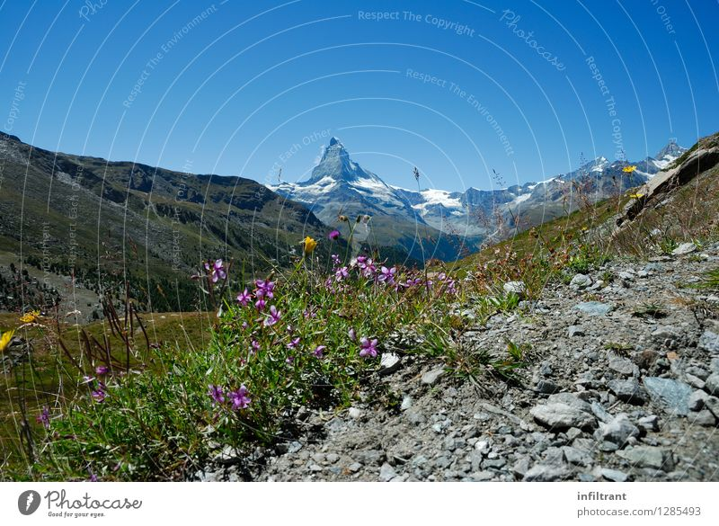 Sky Nature Vacation & Travel Blue Green Beautiful Summer Sun Relaxation Landscape Calm Mountain Life Gray Freedom Pink