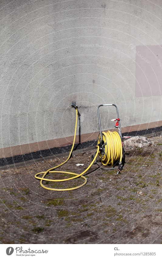 hose Summer Climate Climate change Weather Warmth Meadow Wall (barrier) Wall (building) Hose Gloomy Yellow Gray Drought Colour photo Exterior shot Deserted