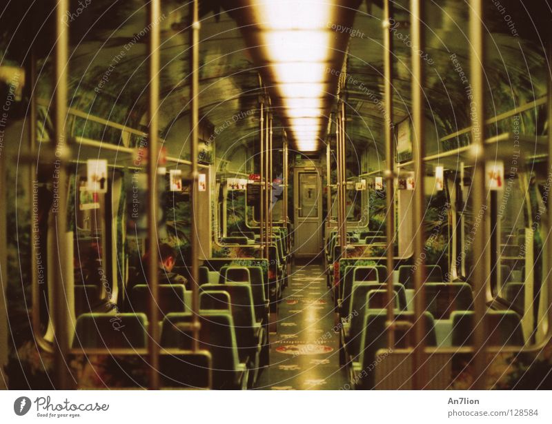 In the morning in the jungle Commuter trains Virgin forest Green Morning Vanishing point Light Leisure and hobbies db