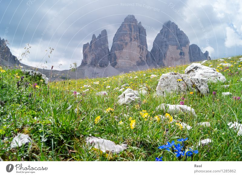 three merlons Vacation & Travel Tourism Trip Mountain Hiking Environment Nature Landscape Elements Clouds Summer Grass Foliage plant Gentian plants Meadow Rock